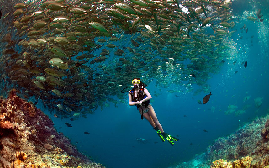 Discover diving experience in Costa Brava - Barcelona Home